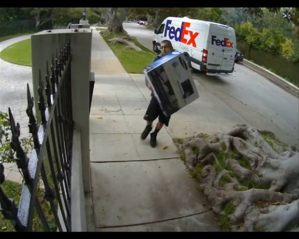 Special delivery from FedEx! Very special!