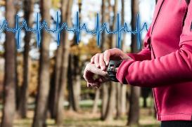 Wristwatch Heart Monitor