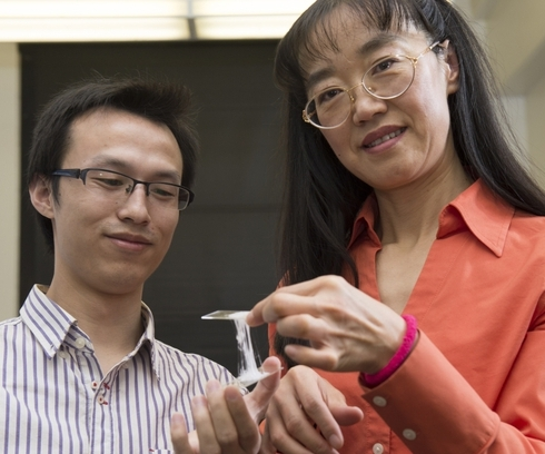 Gummy Electrolyte may make Safer Lithium Ion Batteries