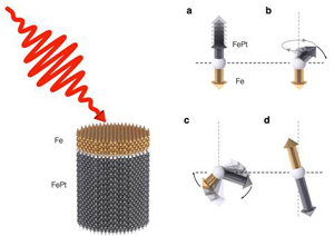 A New Class of Magnetic Material