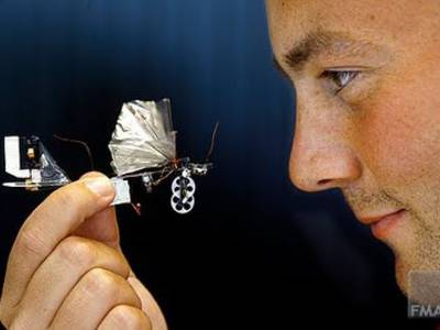 DelFly, the Autonomous Robot Dragonfly