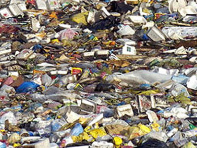 Plastic-Munching Sea Bacteria
