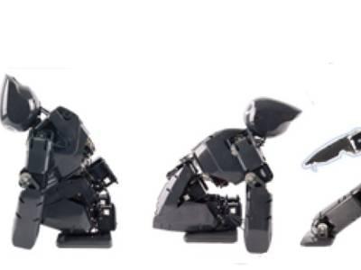 Open Platform Drives Personal Robotics Boom