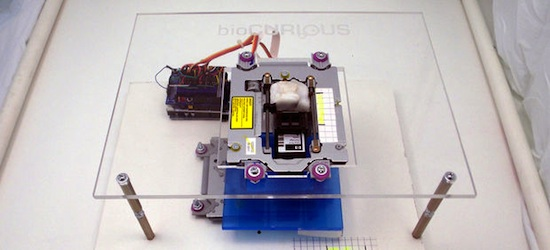 Printing Living Cells With a $150 Open Source Bioprinter